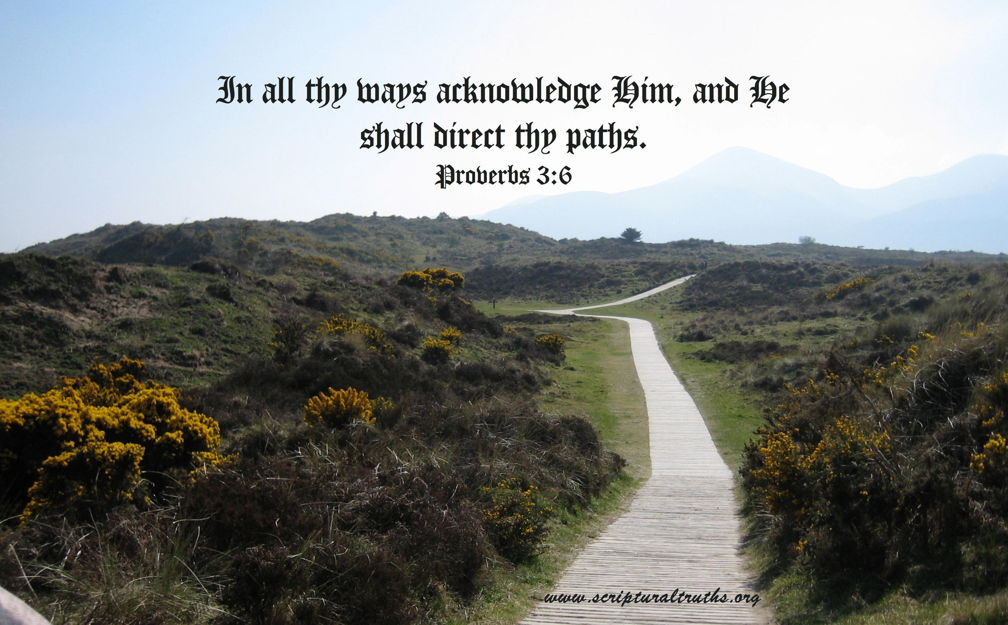 Proverbs 3.6-001